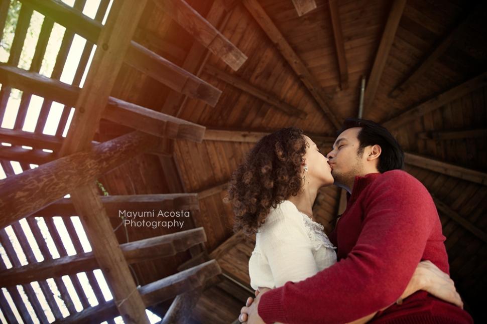 Engagement Portraits, Sacramaneto photographer, Portraits at UC Davis Arboretum, Davis Lifestyle Photographer, Photographs of Wedding Proposal
