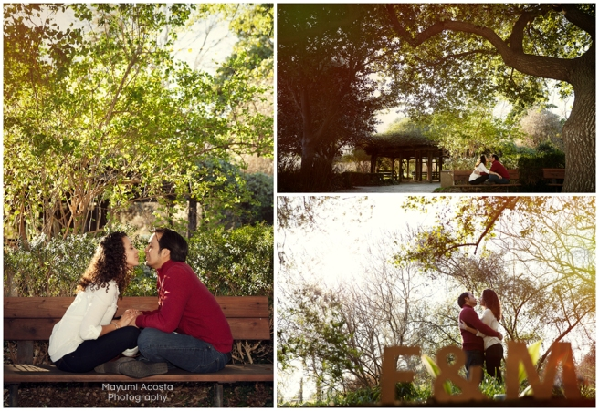 Engagement Portraits, Sacramaneto photographer, Portraits at UC Davis Arboretum, Davis Lifestyle Photographer, Photographs of Wedding Proposal